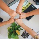 سه اصل برنامه همکاری با اینشورتک ها